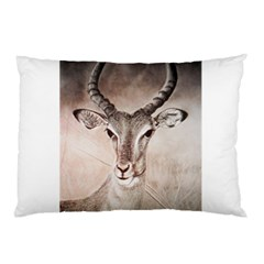 Antelope Horns Pillow Cases by TwoFriendsGallery