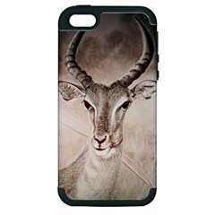 Antelope Horns Apple Iphone 5 Hardshell Case (pc+silicone) by TwoFriendsGallery
