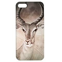 Antelope Horns Apple Iphone 5 Hardshell Case With Stand