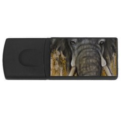 In The Mist Usb Flash Drive Rectangular (4 Gb)  by timelessartoncanvas