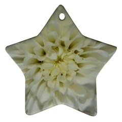 White Flowers Star Ornament (two Sides)  by timelessartoncanvas