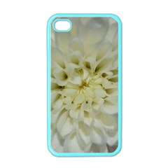 White Flowers Apple Iphone 4 Case (color) by timelessartoncanvas
