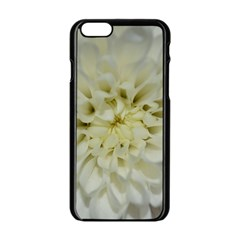 White Flowers Apple Iphone 6/6s Black Enamel Case by timelessartoncanvas