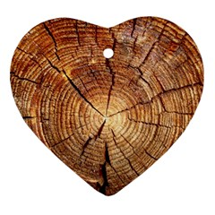 Cross Section Of An Old Tree Ornament (heart)  by trendistuff