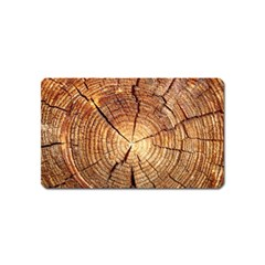 Cross Section Of An Old Tree Magnet (name Card) by trendistuff