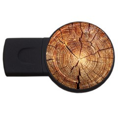 Cross Section Of An Old Tree Usb Flash Drive Round (4 Gb)  by trendistuff