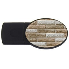Light Brick Wall Usb Flash Drive Oval (4 Gb)  by trendistuff