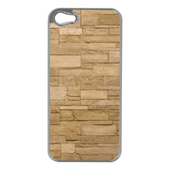Block Wall 2 Apple Iphone 5 Case (silver) by trendistuff