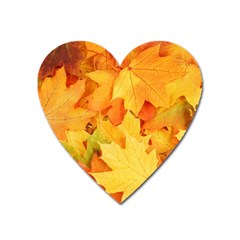 Yellow Maple Leaves Heart Magnet by trendistuff