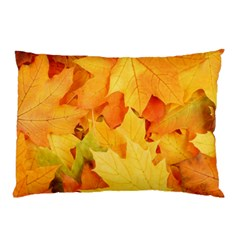 Yellow Maple Leaves Pillow Cases