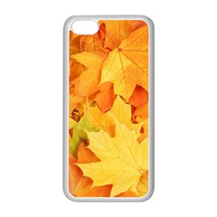 Yellow Maple Leaves Apple Iphone 5c Seamless Case (white) by trendistuff
