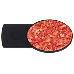 Red Maple Leaves Usb Flash Drive Oval (4 Gb)  by trendistuff