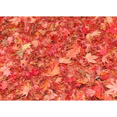 Red Maple Leaves Birthday Cake 3d Greeting Card (7x5)