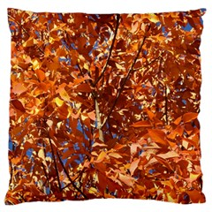 Orange Leaves Large Cushion Cases (two Sides)  by trendistuff