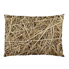 Light Colored Straw Pillow Cases