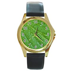 Green Leaf Drops Round Gold Metal Watches