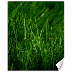 Green Grass 1 Canvas 16  X 20   by trendistuff