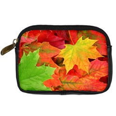 Autumn Leaves 1 Digital Camera Cases by trendistuff