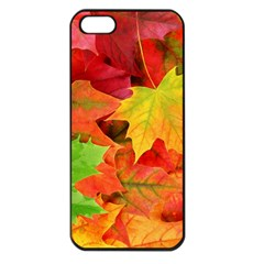 Autumn Leaves 1 Apple Iphone 5 Seamless Case (black) by trendistuff