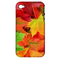 Autumn Leaves 1 Apple Iphone 4/4s Hardshell Case (pc+silicone) by trendistuff
