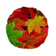 Autumn Leaves 1 Standard 15  Premium Round Cushions by trendistuff