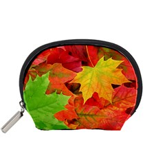 Autumn Leaves 1 Accessory Pouches (small)  by trendistuff