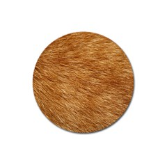 Light Brown Fur Magnet 3  (round) by trendistuff
