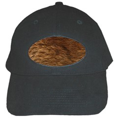 Bear Fur Black Cap by trendistuff