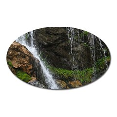Waterfall Oval Magnet by trendistuff