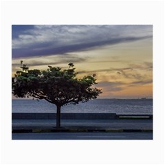 Sunset Scene At Boardwalk In Montevideo Uruguay Small Glasses Cloth by dflcprints