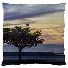 Sunset Scene At Boardwalk In Montevideo Uruguay Large Flano Cushion Cases (two Sides)  by dflcprints