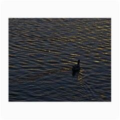 Lonely Duck Swimming At Lake At Sunset Time Small Glasses Cloth by dflcprints