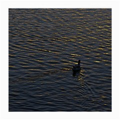 Lonely Duck Swimming At Lake At Sunset Time Medium Glasses Cloth (2-side) by dflcprints