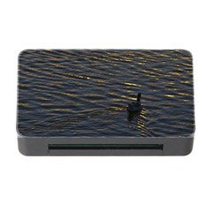 Lonely Duck Swimming At Lake At Sunset Time Memory Card Reader With Cf by dflcprints