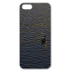 Lonely Duck Swimming At Lake At Sunset Time Apple Seamless Iphone 5 Case (clear) by dflcprints