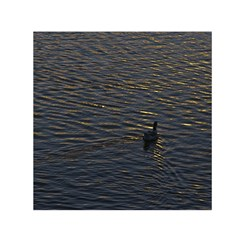 Lonely Duck Swimming At Lake At Sunset Time Small Satin Scarf (square)  by dflcprints