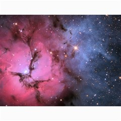 Trifid Nebula Canvas 12  X 16