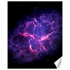 Pia17563 Canvas 11  X 14   by trendistuff
