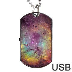 Ic 1396 Dog Tag Usb Flash (one Side) by trendistuff