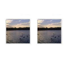 Intercoastal Seagulls 3 Cufflinks (square) by Jamboo