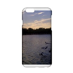 Intercoastal Seagulls 3 Apple Iphone 6/6s Hardshell Case