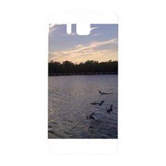Intercoastal Seagulls 3 Samsung Galaxy Alpha Hardshell Back Case