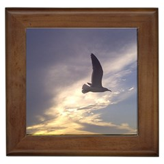 Seagull 1 Framed Tiles by Jamboo