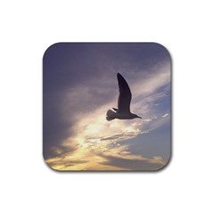 Seagull 1 Rubber Square Coaster (4 Pack)  by Jamboo