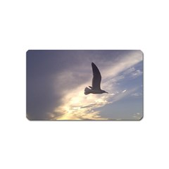 Seagull 1 Magnet (name Card) by Jamboo