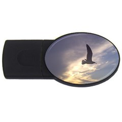 Seagull 1 Usb Flash Drive Oval (4 Gb)  by Jamboo