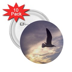 Fly Seagull 2 25  Buttons (10 Pack)