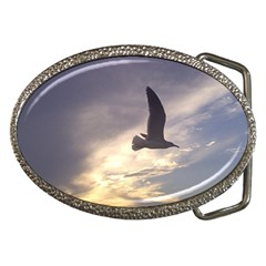Fly Seagull Belt Buckles by Jamboo