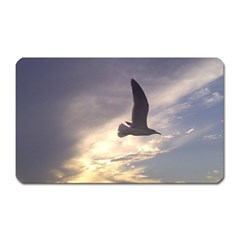 Fly Seagull Magnet (rectangular) by Jamboo