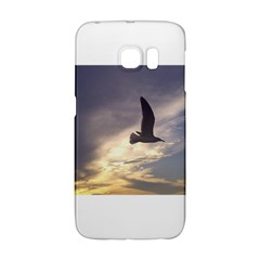 Fly Seagull Galaxy S6 Edge